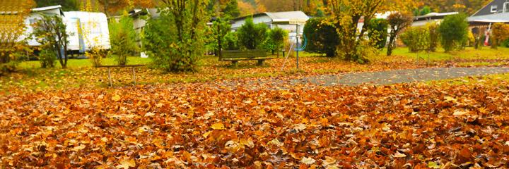Herbst_2017_720x240px
